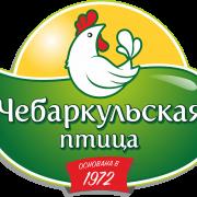 chebarkulskaya_ptitsa